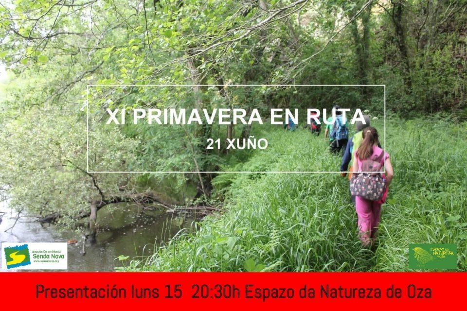 Presentacion XI PR