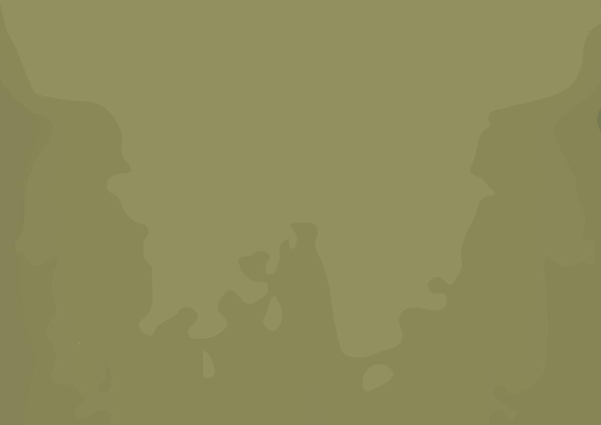 Cor camiseta - Militar