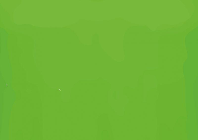 Cor camiseta - Verde fieita