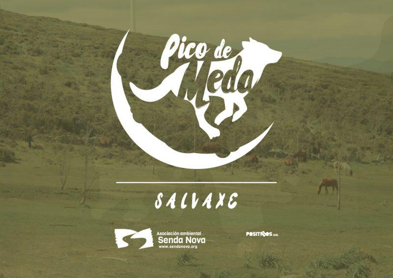 Pico de Meda (Salvaxe)