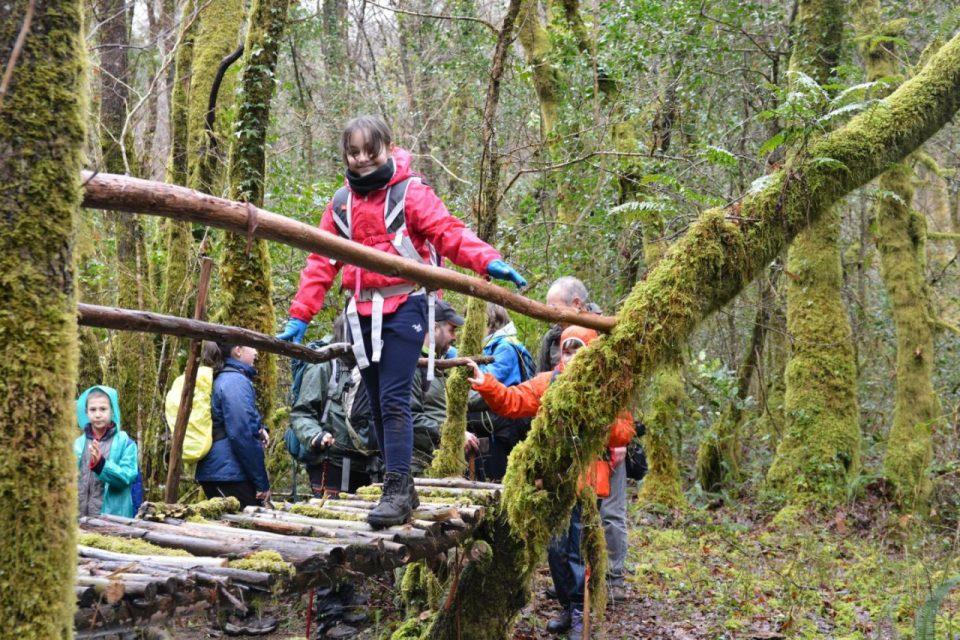 Xornadas de Interpretación dos Bosques 2016